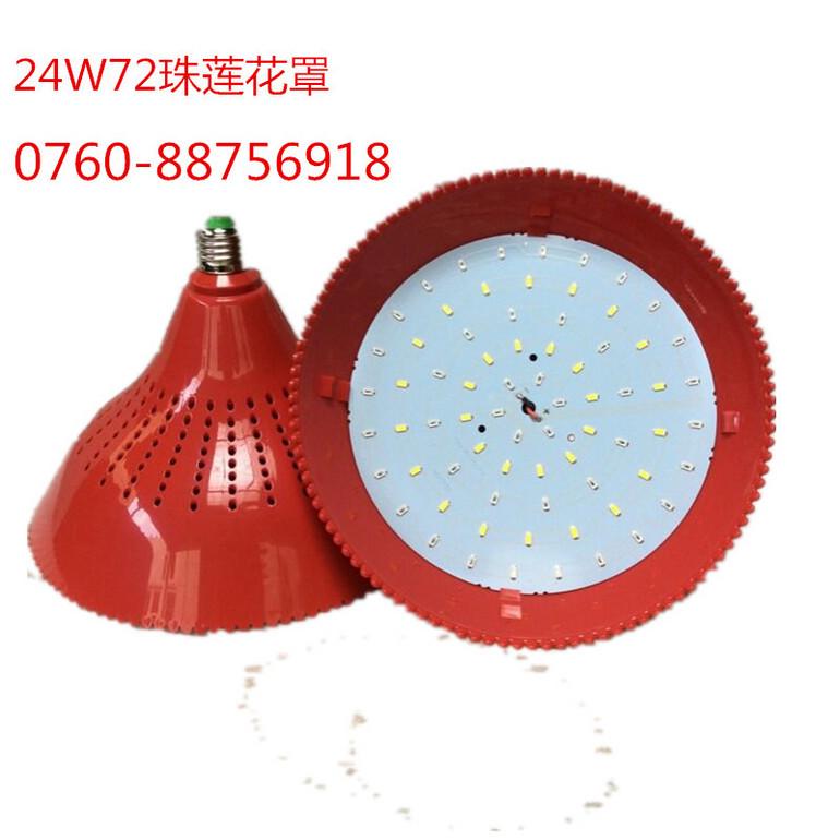 生鲜灯24W