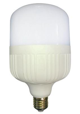 德中 高富帅白富美高罩高泡平头鸟笼18W三防LED球泡灯
