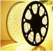 2835-10mm-180D-双排-黄板-透明(足灯足米)灯带