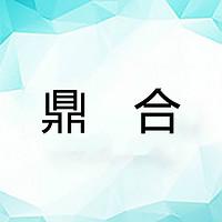 中山市鼎合电器有限公司