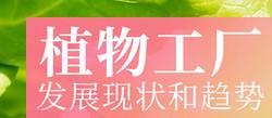 【古镇灯博会明人在线】仝宇欣 :植物工厂发展现状和趋势