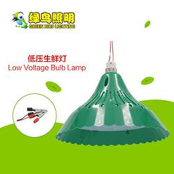 绿色灯罩超亮低压LED生鲜灯