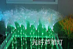 博展光纤芦苇灯