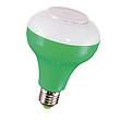 白、紅、綠、黃5W藍牙音樂燈泡+照明
